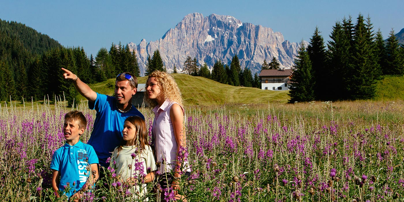 Family in a field of violet flowers with the Dolomites on the background stares at the horizon